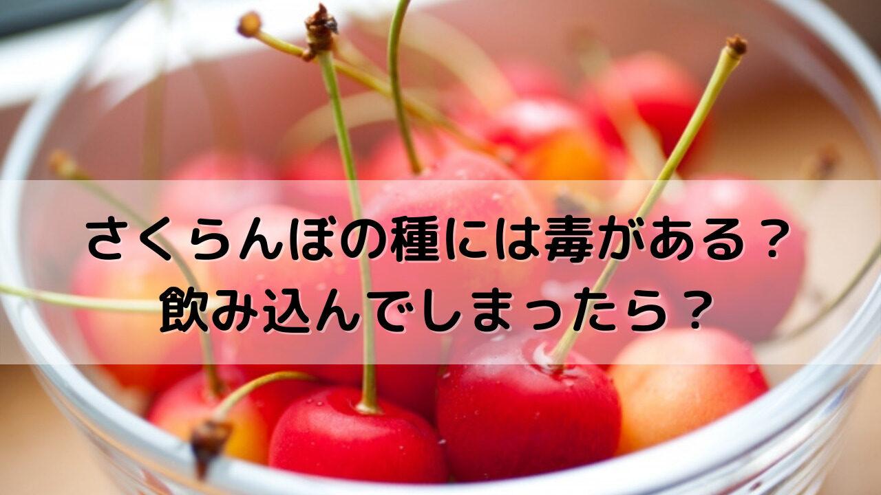 さくらんぼの種には毒がある?